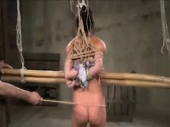 Whipped Tied And Toyed