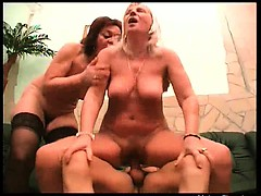 Very horny mature sluts with big tits are sucking this