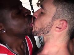 Black bear Daemon Sadi drills horny Owen Powers